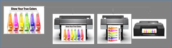 harmonisation couleurs SC-P5000