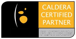 caldera_platinum_vect